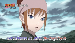 Naruto Shippuden Episode 490 Subtitle Indonesia