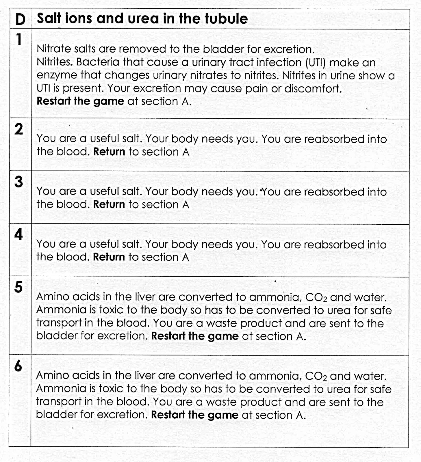 100 Free Science Worksheets The Kidney Game