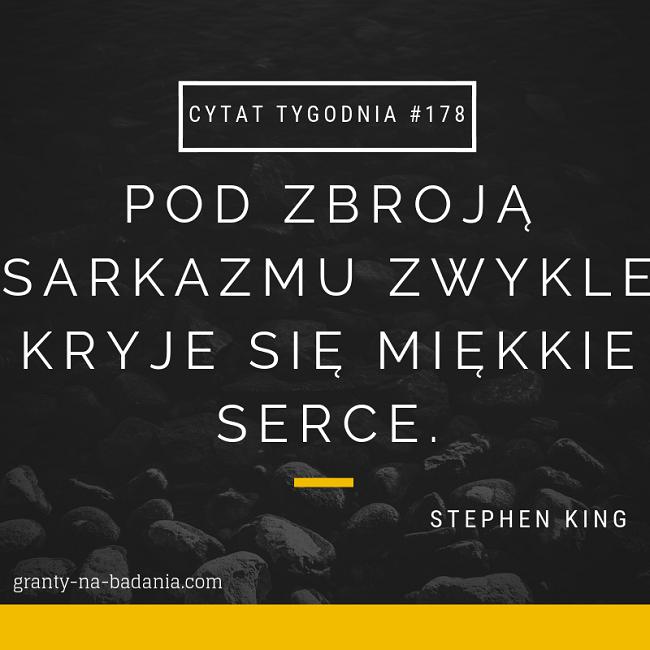 Pod zbroją sarkazmu zwykle kryje się miękkie serce - Stephen King