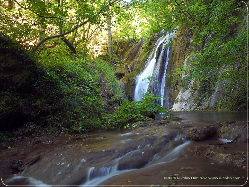 Waterfall In Forest Scenery Background