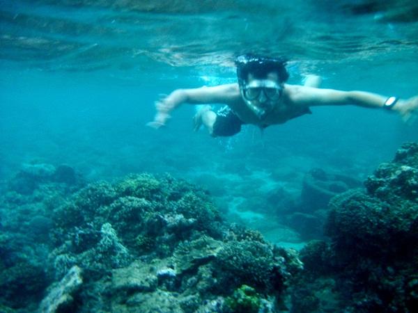 Snoorkeling Ekosistem Bawah Pantai