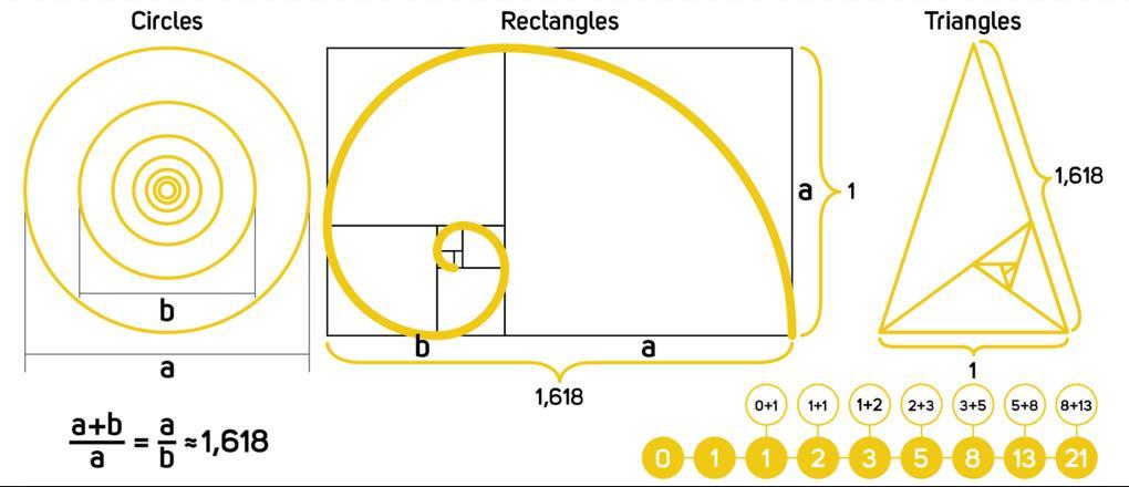 apa itu golden ratio