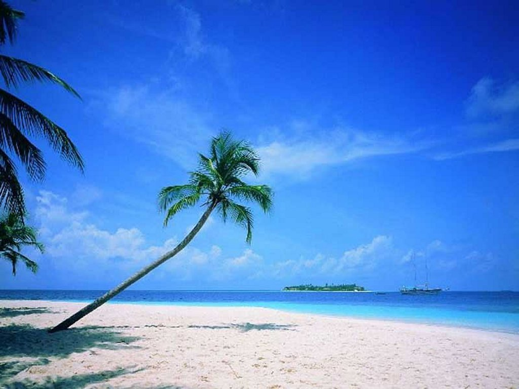 High Definition Beach Wallpapers ~ Cool Wallpapers