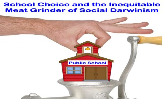 Image result for big education ape school choice