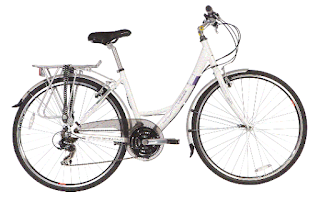 Stolen Bicycle - Jupiter Newport