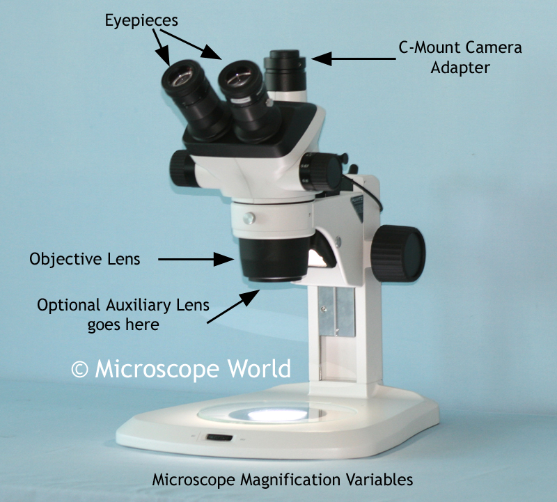 Microscope World Blog: Stereo Microscope Magnification