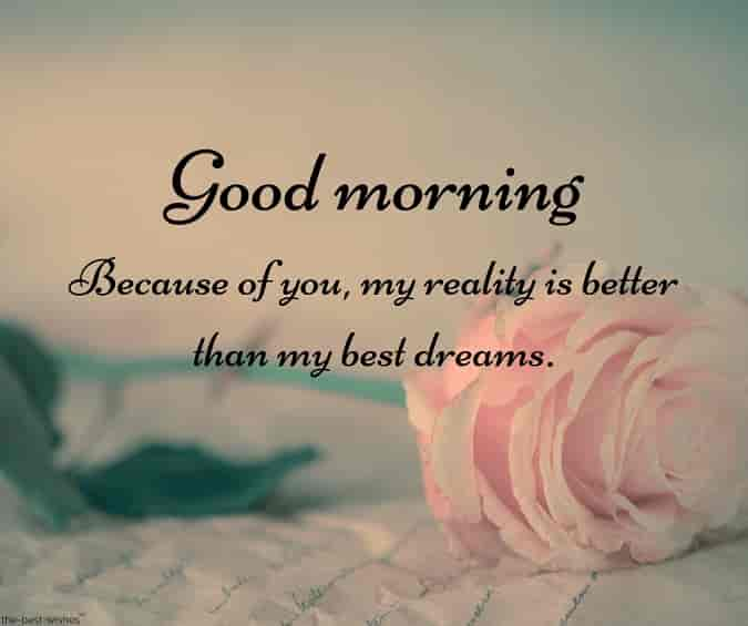 cute good morning text messages for him with pink rose