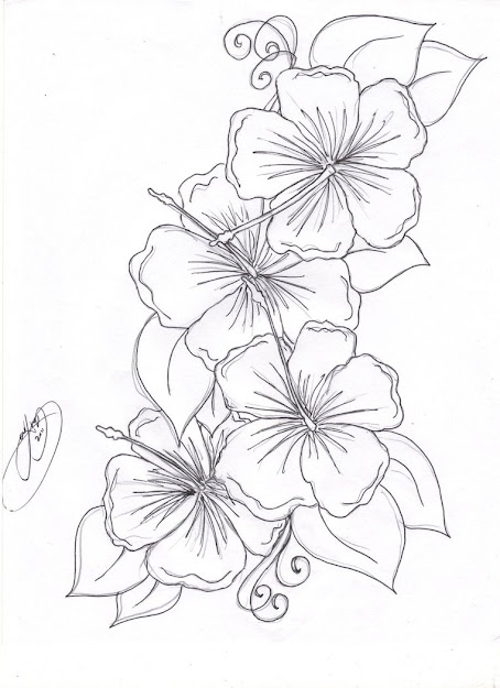 Hummingbird Hibiscus Tattoo Drawing  The Hibiscus Flowers Tattoo Pictures  To Pin On Pinterest