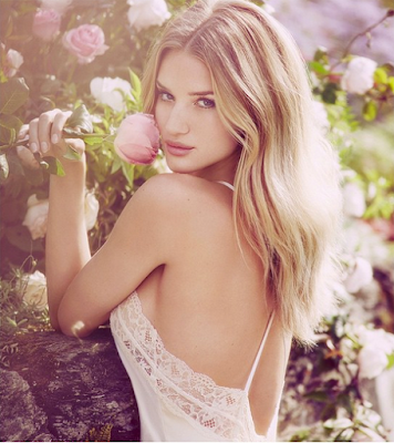 Rosie Huntington Whiteley boyfriend, hair, makeup, style, transformers, dress, age, wiki, biography