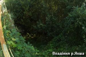 Впадіння р.Якша