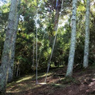 Balanço nas Araucárias do Parque das Cachoeiras, Vacaria