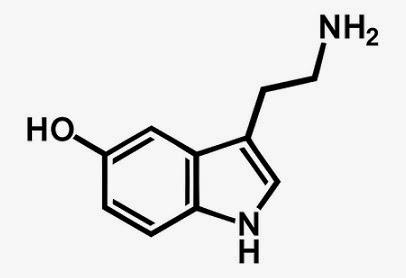 5-hydroxytryptamine 5-HT 5-hidroxitriptamina serotonin sérotonin dibujo formula quimica estrucutra