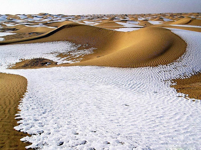 in 1979, snow fell in the Sahara Desert
