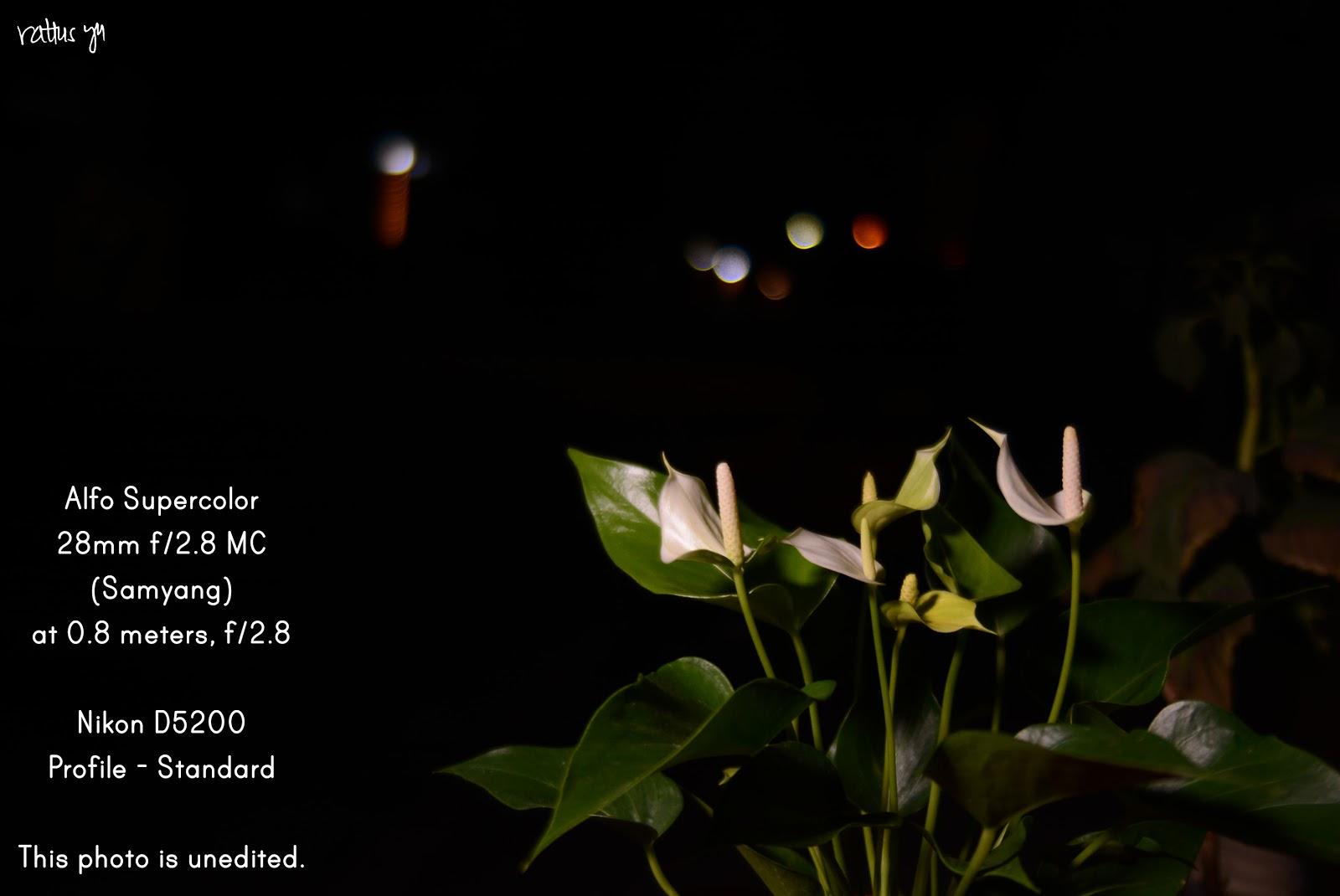 LENS LOVE: Alfo Supercolor 28mm f/2 8 MC (Samyang) | Lens