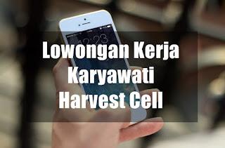 Lowongan Kerja Karyawati Harvest Cell