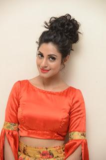 Actress Iraa Stills IN Floral Skirt at Vaadu Veedu O Kalpana Audio Launch  0001.jpg