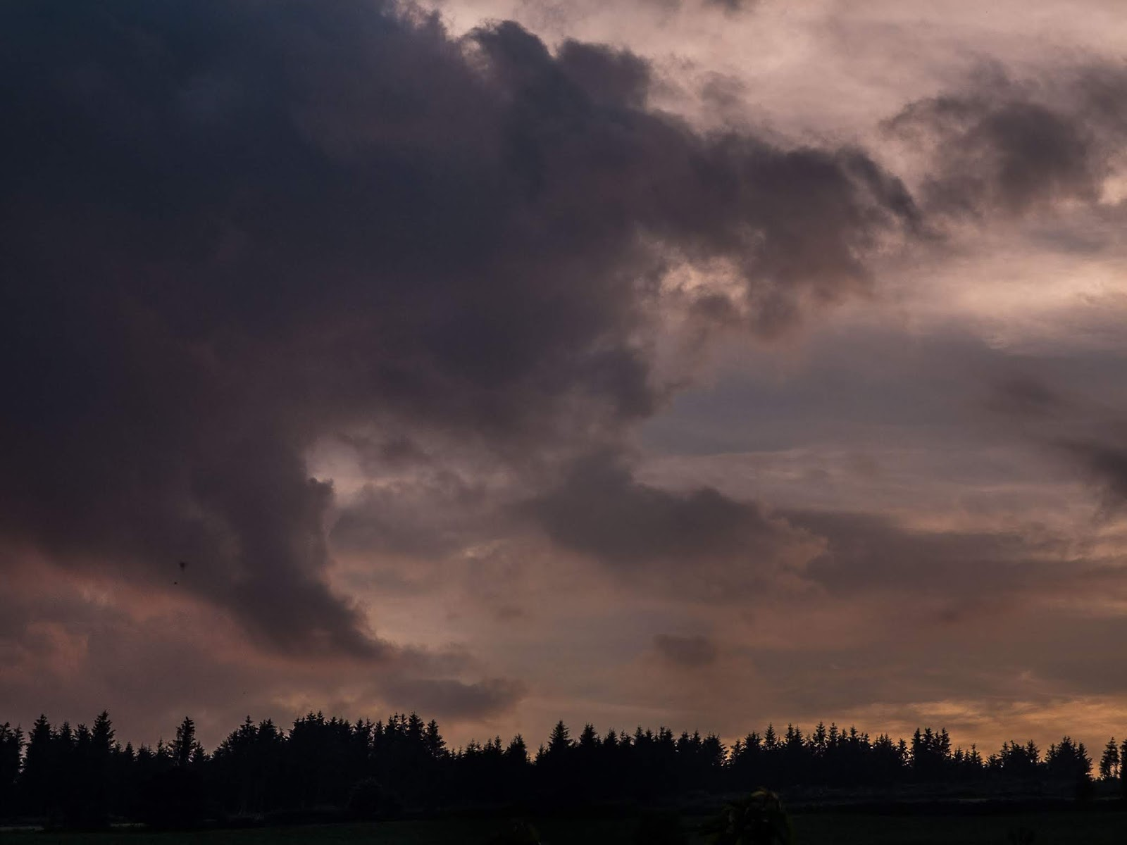 A dark cloud approaching on a sunset over a conifer forestry in the Boggeragh Mountains in North Cork.