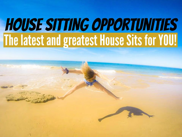house sitting opportunities