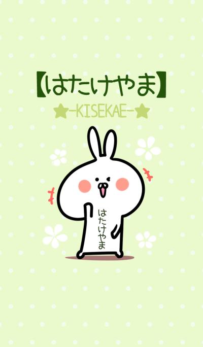 Hatakeyama usagi green Theme
