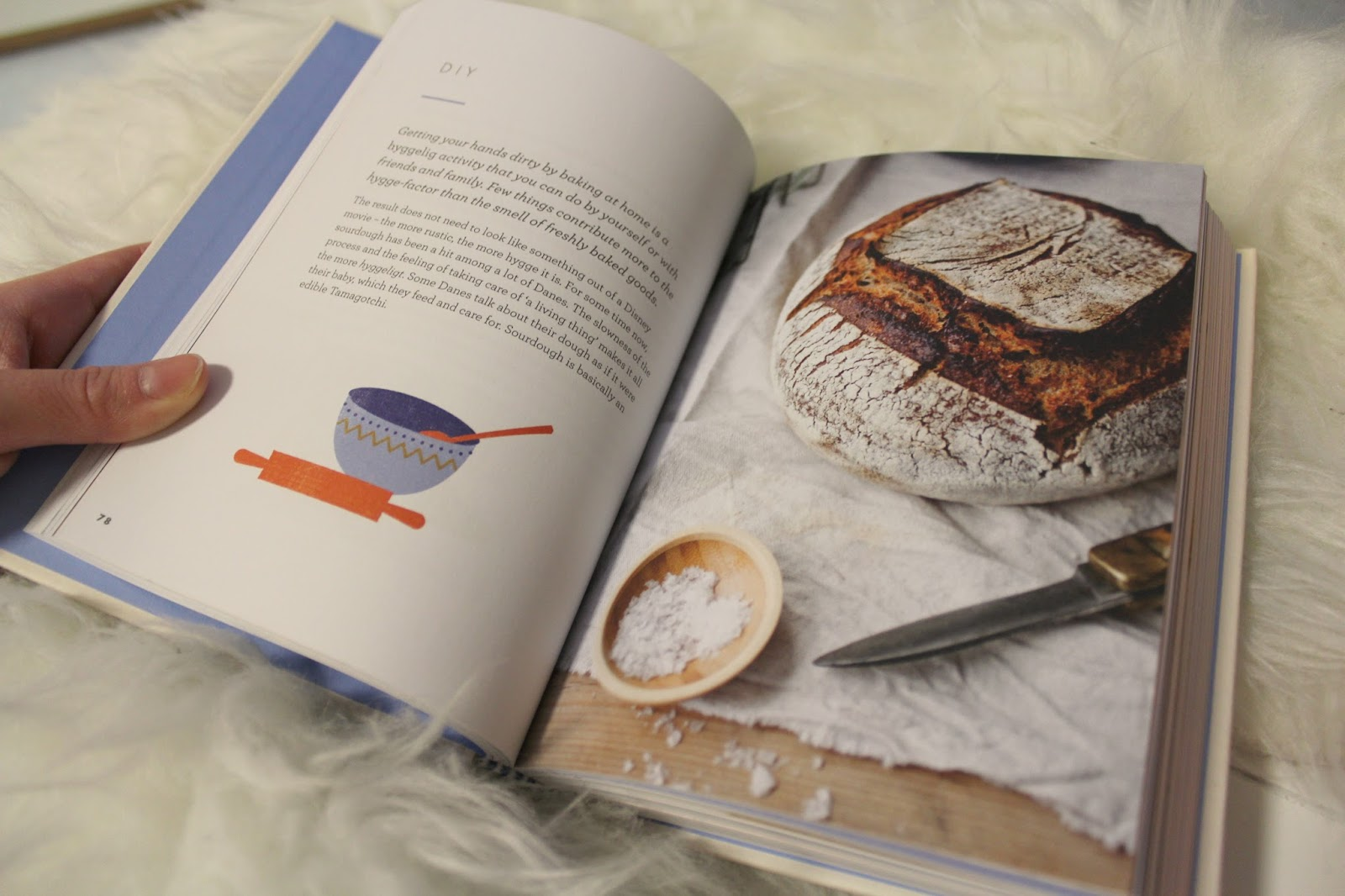 The little book of hygge book review blogmas day 7 jess in have you read the little book of hygge what did you think did it make you want to redecorate your whole flat and build a fireplace solutioingenieria Choice Image