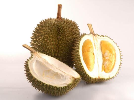 Bolehkah Ibu Menyusui Makan Durian Apa Manfaat Khasiat dan Bahayanya Bagi Ibu dan Anak