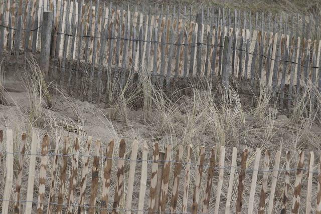 gelaagdheid in duin, layers in dune
