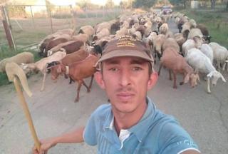 Ο 25χρονος βοσκός με την «καριέρα» στο facebook και τα 150 πρόβατα