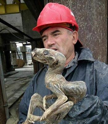 """""""Criatura mumificada"""" é achada em mina de diamantes na Rússia"""