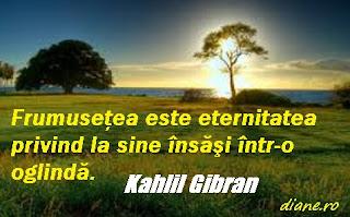 Kahlil Gibran Frumuseţea este eternitatea privind la sine însăşi într-o oglindă