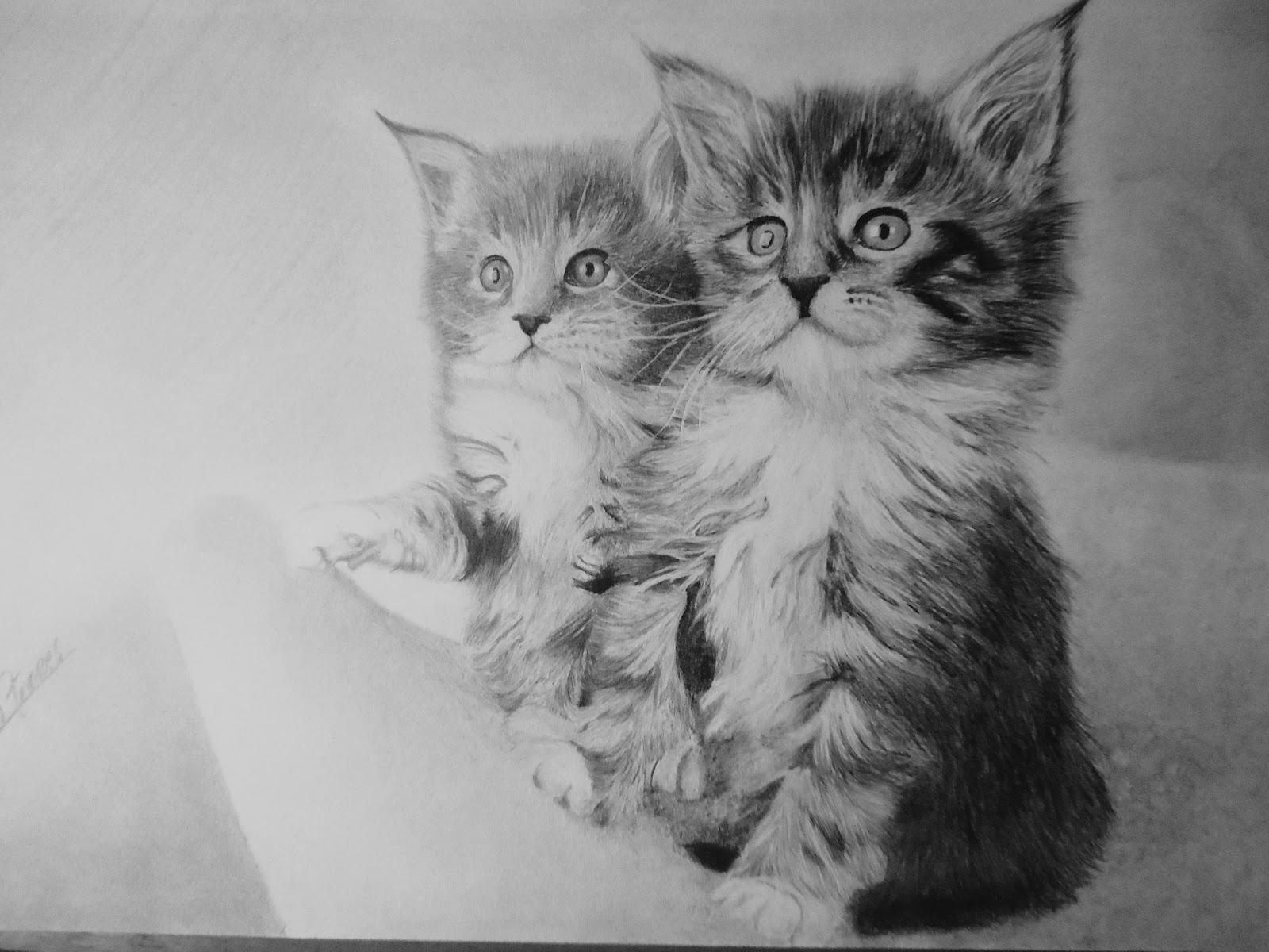 344e9c02c7f98 Deitado gato desenhos de sombras jpg 1600x1200 Deitado gato desenhos de  sombras