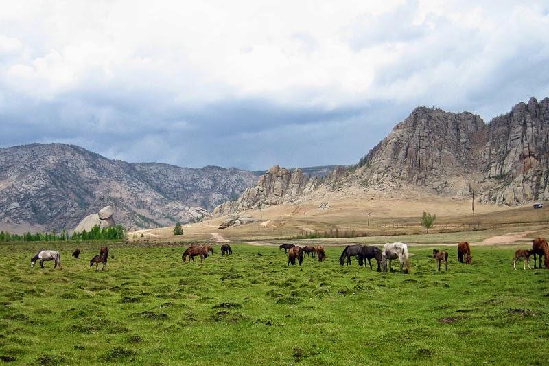 Монголын үнэртэй салхи
