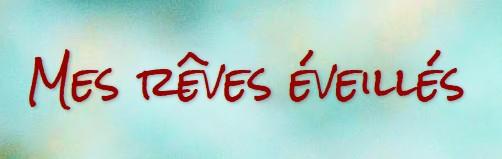 http://eneltismae.blogspot.com/2016/08/chronique-fuv-mes-reves-eveilles.html