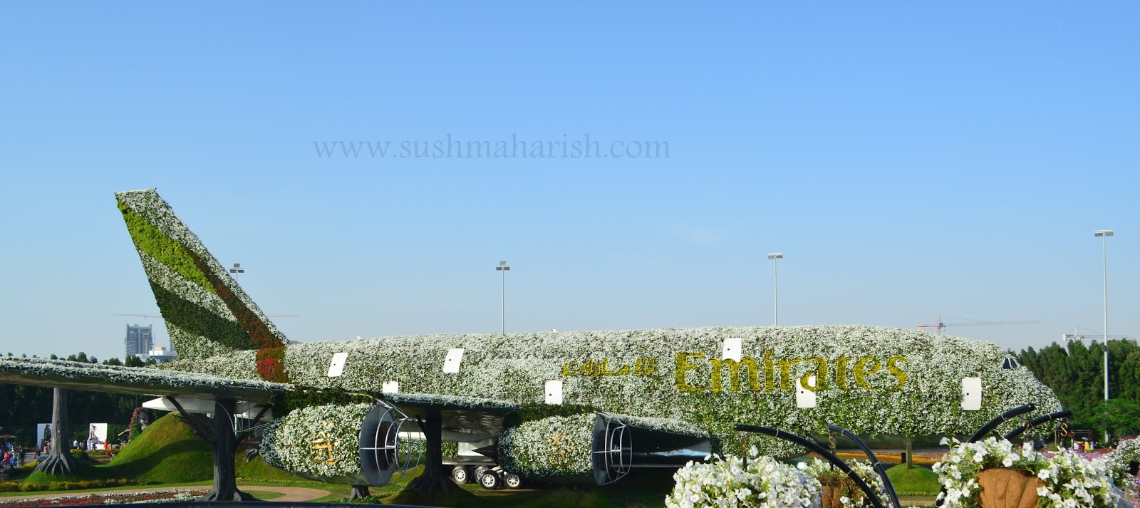 Exploring Beyond The Skyscrapers. Largest Flower Garden Of The World - Miracle Garden Dubai. 30