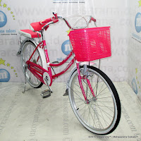 City Bike Evergreen R1 Butterfly 24 Inci