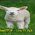 GoatTV10 - Live TV Apk