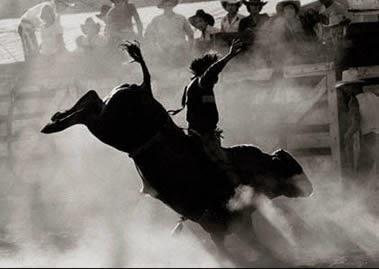 #Rodeio (Jogo Hípico)