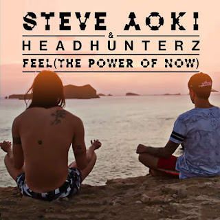 Steve Aoki & Headhunterz - Feel (The Power of Now) on iTunes