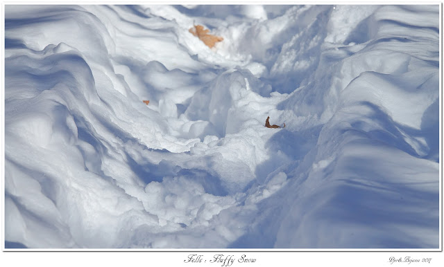 Fells: Fluffy Snow