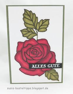 stampinblends von stampin up auf flüsterweiss mit stempelset rosenzauber von demonstratorin in coburg susis basteltipps