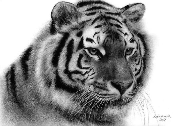 04-Tiger-Danguole-Serstinskaja-Animal-Dry-Brush-Technique-Paintings-www-designstack-co