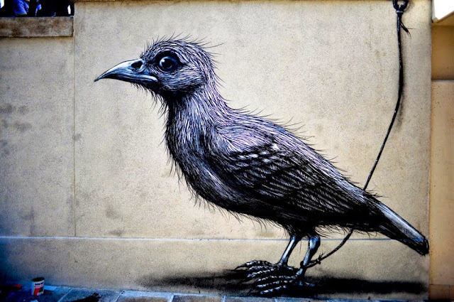Street Art By Belgian Painter ROA For Lecco Street Art View '13 In Italy. 1