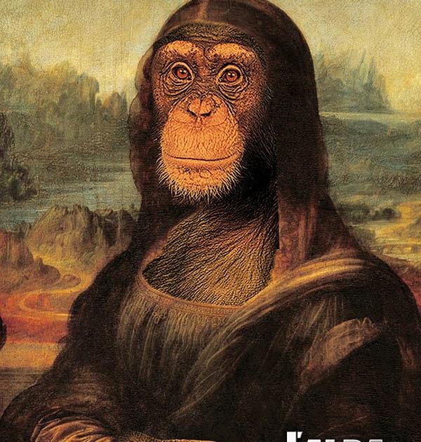 Immagini divertenti di scimmie for Immagini divertenti desktop