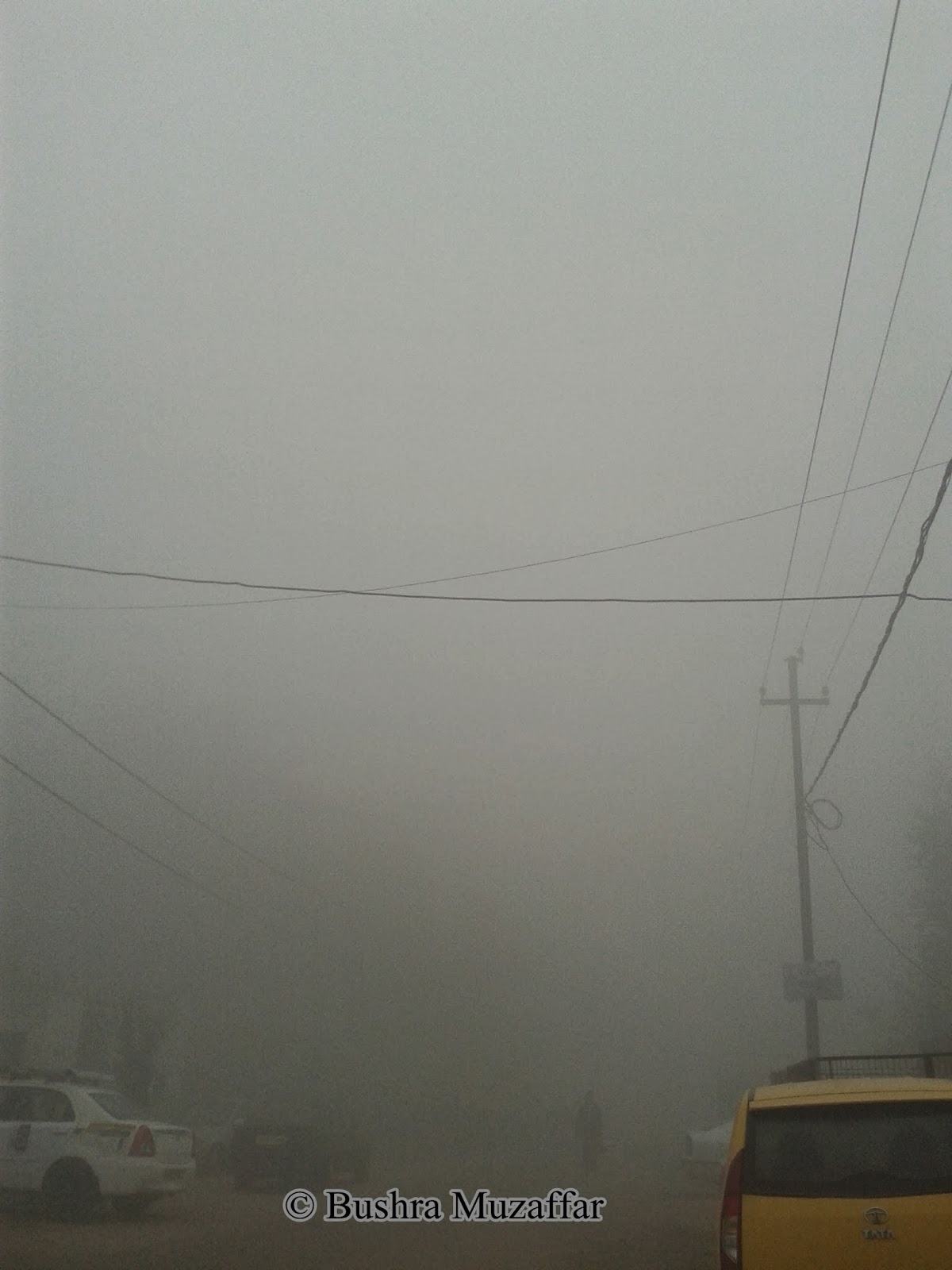 Fog in Noida, December 2013
