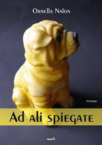 Ad-ali-spiegate