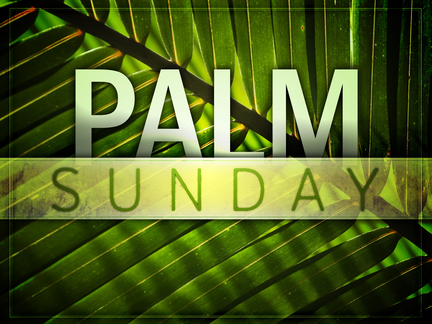 PicturesPool: Happy Palm Sunday Wallpaper