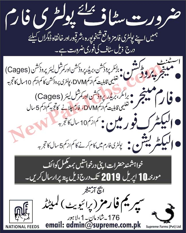 Private Jobs in Poultry farm in Lahore