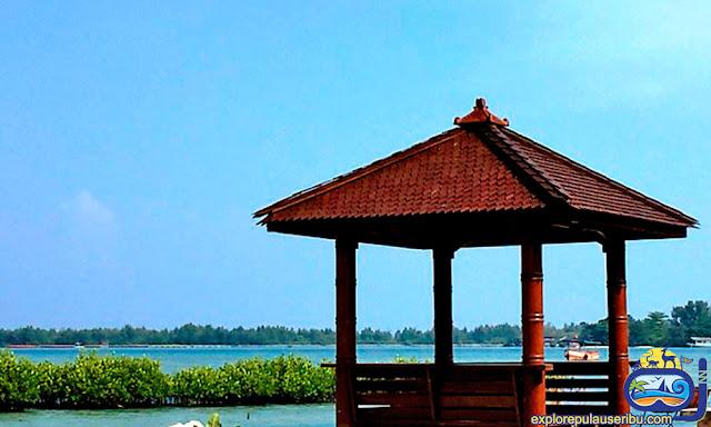 homestay pulau harapan