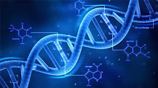 vivix atasi masalah kerosakan DNA