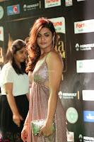 Telugu Actress Aarthi in Deep Neck Backless Golden Gown at IIFA Utsavam Awards 2017 Exclusive 05.JPG