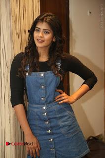 Actress Hebah Patel Stills at Nanna Nenu Naa Boyfriends Movie Interview  0029.JPG